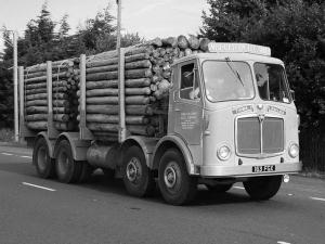 1959 AEC Mammoth Major 8 Mk V Timber Truck