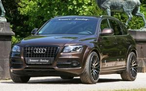 Audi Q5 by Senner Tuning 2011 года