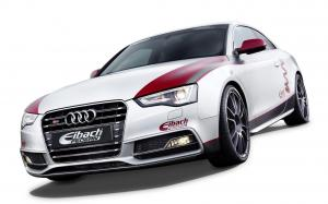 Audi S5 Coupe by Eibach '2012