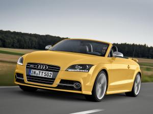 Audi TTS Roadster Competition 2013 года