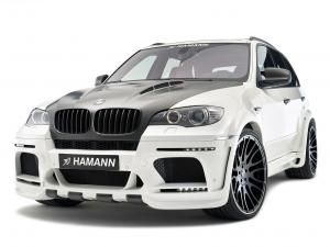 BMW Flash EVO M by Hamann 2010 года