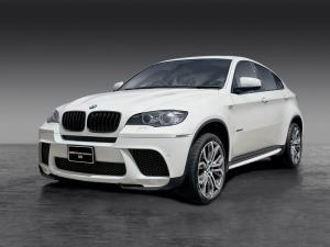 BMW X6 xDrive 3.5i M Performance Accessories 2010 года