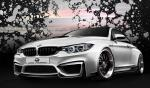 BMW M4 by Duke Dynamics 2014 года