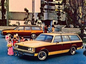 1979 Buick Century Estate Wagon