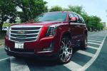 Cadillac Escalade on Forgiato Wheels (Insetto-M) 2017 года