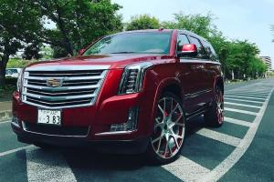 Cadillac Escalade on Forgiato Wheels (Insetto-M)