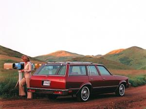 Chevrolet Malibu Station Wagon 1979 года