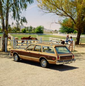 1979 Dodge Aspen Special Edition Wagon
