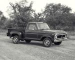 Ford F-150 1973 года