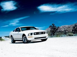 Ford Mustang V6 Pony Package 2006 года