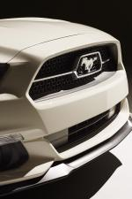 Ford Mustang GT 50th Anniversary Edition 2015 года
