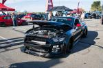 Ford Mustang GT Stage 3 Widebody by TruFiber 2015 года
