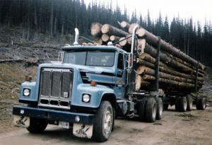 1984 International PayStar 5000 6x4