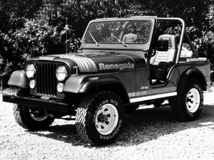 Jeep CJ-5 Renegade 1979 года