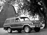 Jeep Wagoneer Limited 1979 года