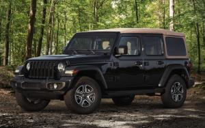 Jeep Wrangler Unlimited Black & Tan 2019 года