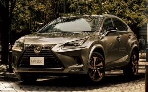 Lexus NX300 Bronze Edition 2020 года (JP)