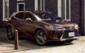 Lexus UX250h Brown Edition 2020 года (JP)