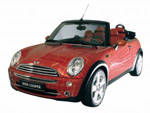 Mini Cooper Cabrio by Gianfranco Ferre 2004 года
