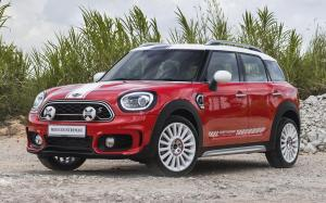 Mini Cooper S Countryman Dartmoor Edition 2019 года (SG)