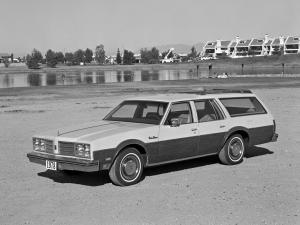 Oldsmobile Custom Cruiser 1978 года