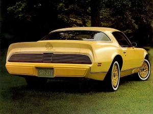 Pontiac Firebird Esprit Yellowbird 1980 года