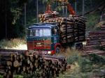 Scania LBT140 Timber Truck 1968 года