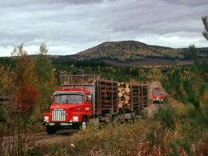 Scania LS141 6x2 Timber Truck 1976 года
