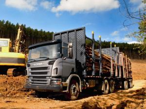 Scania P340 6x4 Timber Truck 2004 года