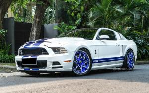 Shelby GT500 by Permaisuri on Forgiato Wheels (Turni-ECL)