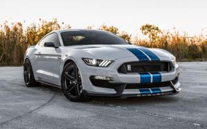 Shelby GT350 on Vossen Wheels (VFS-5)