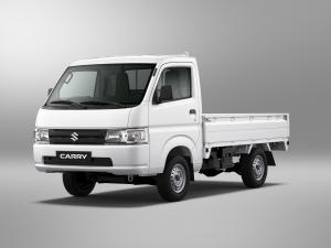 Suzuki Carry 2019 года