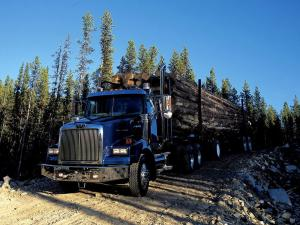 Western Star 4900 SB Timber Truck 2008 года