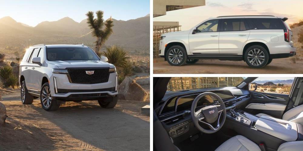 Cadillac Escalade Platinum Sport 2020 года