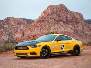 Shelby Mustang Terlingua